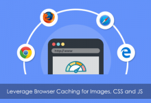 آموزش رفع خطای leverage browser caching در GTmetrix 41