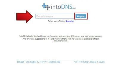 روش بررسی DNS های یک دامنه 22