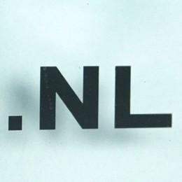 قوانین ثبت دومین هلند .NL 1