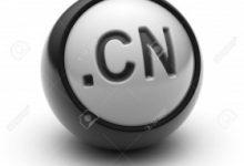 قوانین ثبت دامین چین .CN 8