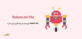 robot.txt چه است و چه کاربردی دارد 24