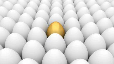 چطور بین این همه تخم مرغ سفید تکراری ، تخم مرغ طلایی ساخت محتوا باشیم ؟! ( نحوه ساخت محتوای ویژه و منحصر به فرد ) 18