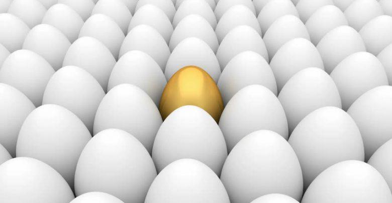 چطور بین این همه تخم مرغ سفید تکراری ، تخم مرغ طلایی ساخت محتوا باشیم ؟! ( نحوه ساخت محتوای ویژه و منحصر به فرد ) 1