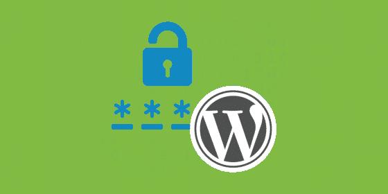۱۰ نکات امنیتی وردپرس برای حفاظت از سایت شما از تهدیدات سایبری 5