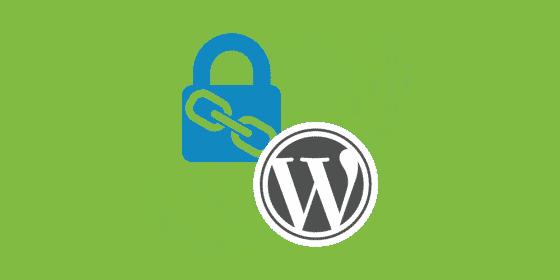 ۱۰ نکات امنیتی وردپرس برای حفاظت از سایت شما از تهدیدات سایبری 9