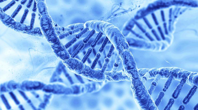 مانع ذهنی 3 در مدیریت زمان : من ژن خوب ندارم !