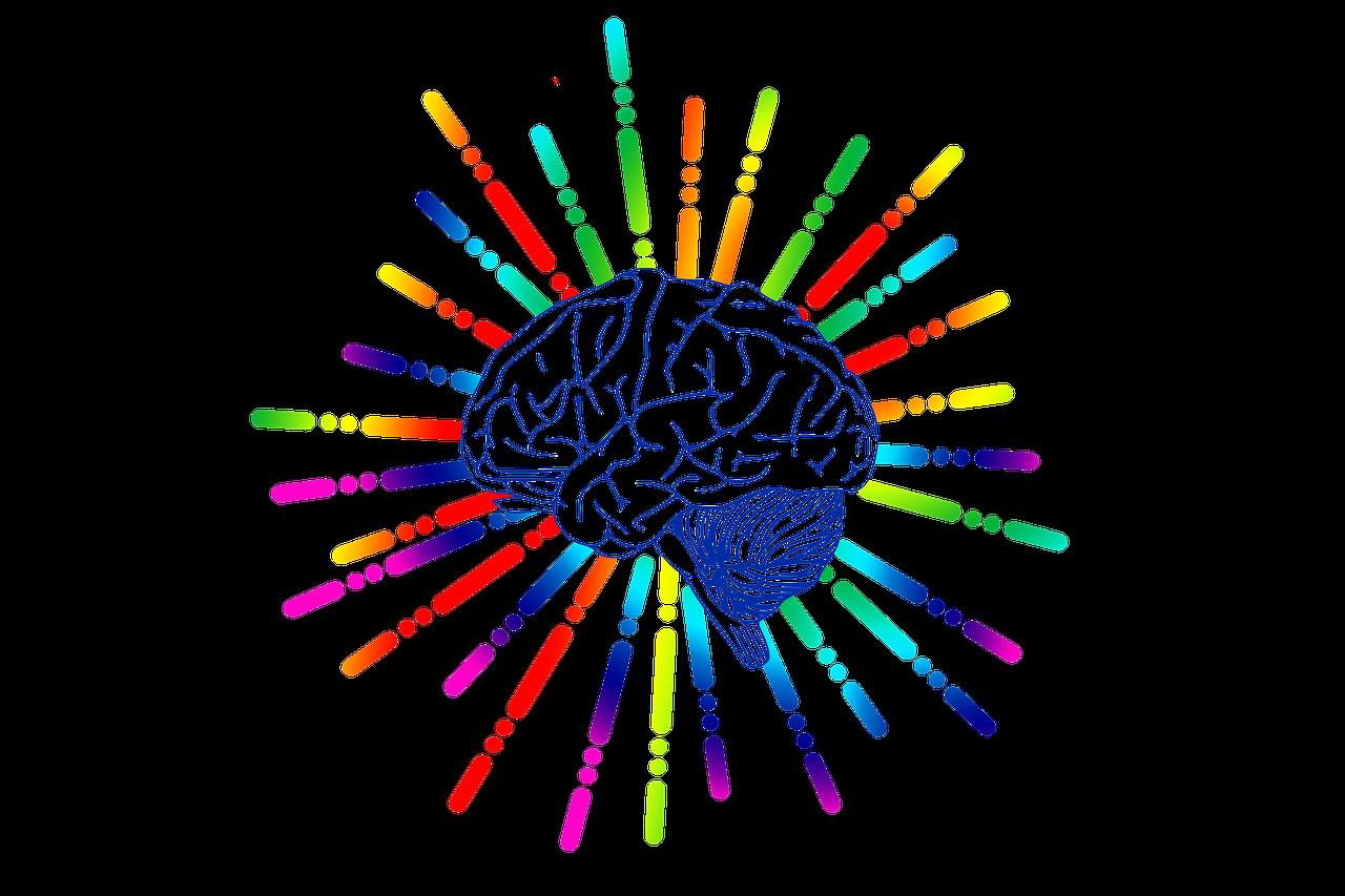 تولید محتوا و عملکرد مغز