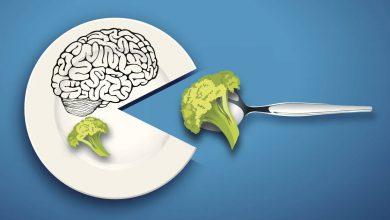۶ ماده غذایی دوست دار مغز، برای ایجاد محتوا به شکلی خارق العاده! 37