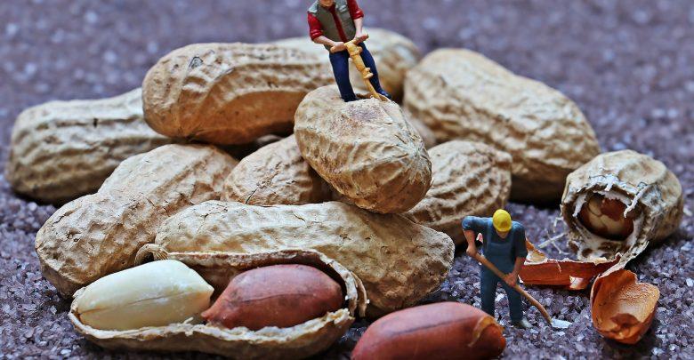 ۵ ترفند بهبود درآمد برای یک فریلنسر ساخت محتوا جدید کار (راهکارهای جذب مشتری بیشتر ) 1