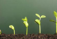 ایمیل بازاریابی از چه طریق به رشد کسب و کارها کمک میکند؟ 42