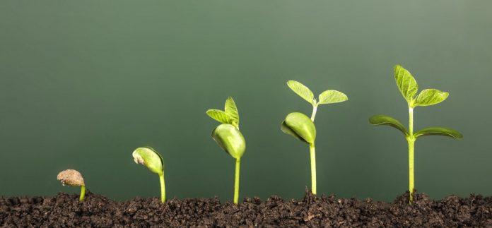 ایمیل بازاریابی از چه طریق به رشد کسب و کارها کمک میکند؟ 1
