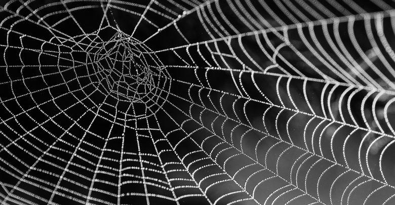 ۱۰ نحوه عنوان نویسی در ساخت محتوا به نحوه تار عنکبوتی  ( نحوه ۳ و ۴ را یقینا انجام دهید ) 1